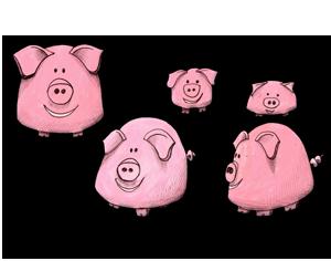 Viande de porc du Goret de la Gourinière